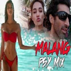 Malang Psy Mix - DJ Tejas Poster