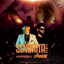 Senorita Remix - DJ Harsh Mahant x DJ Paggy Poster