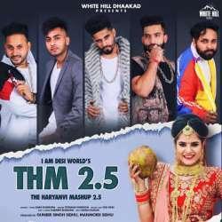 The Haryanvi Mashup 2.5 Poster