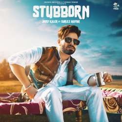 Stubborn Poster