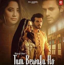 Tum Bewafa Ho Poster