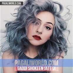 Gaddi Shokeen Jatt Di Poster